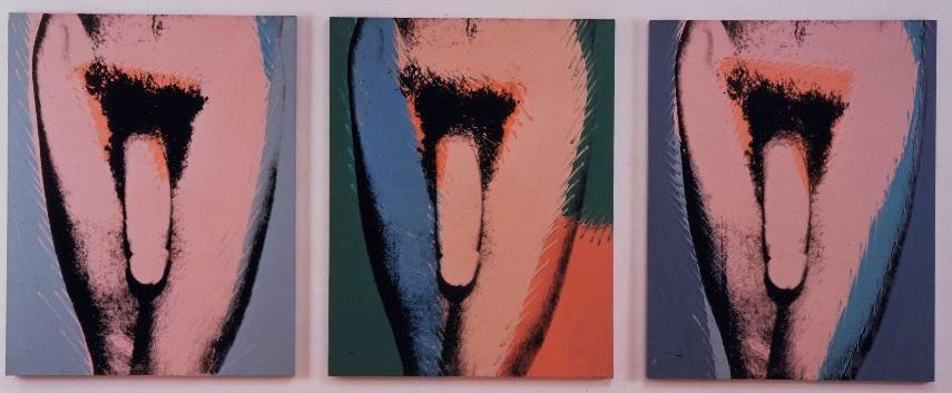 Andy-Warhol-Penis.jpg