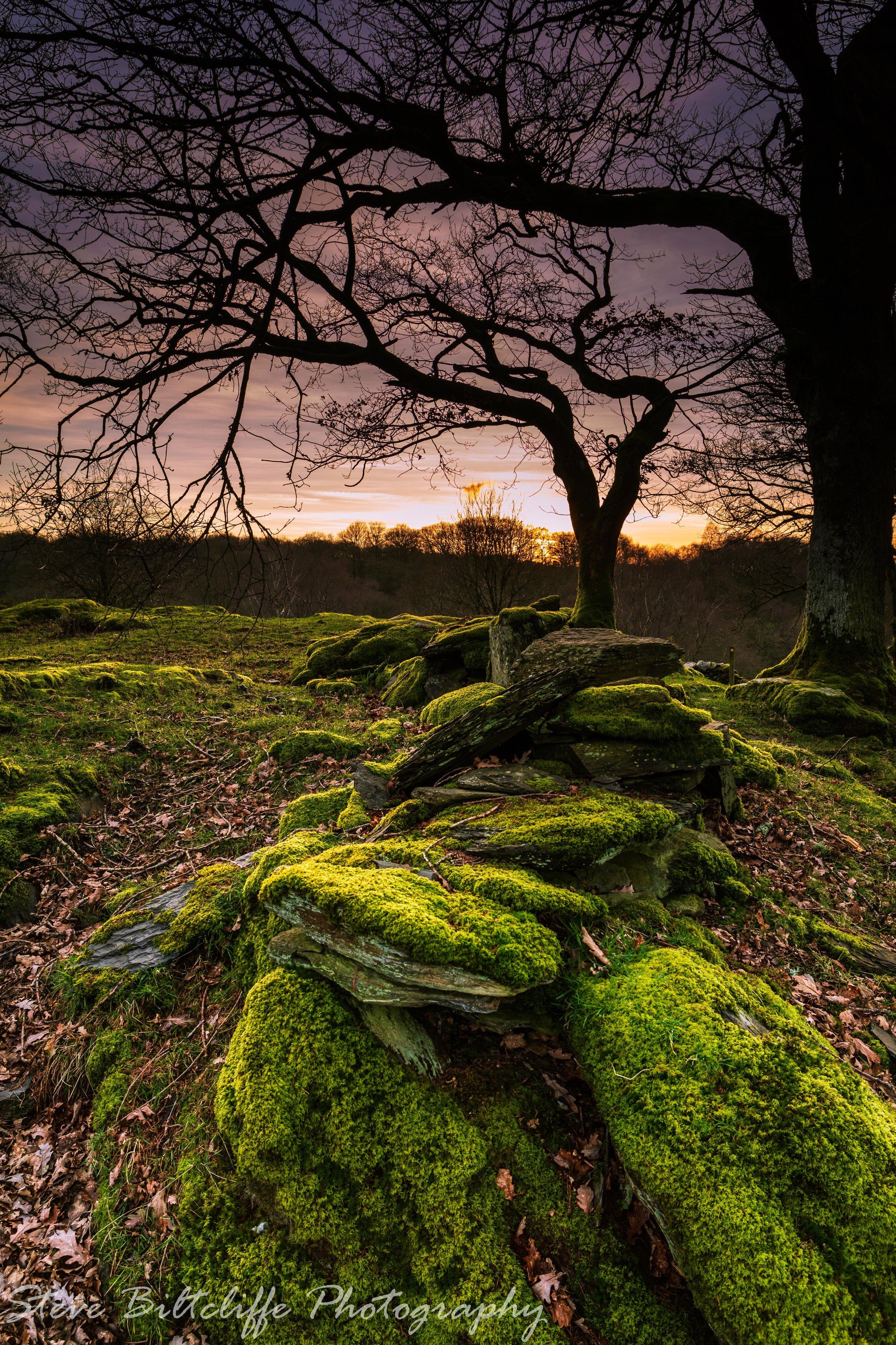 Sunset over Mynydd Garthmyn near Betws-y-Coed
