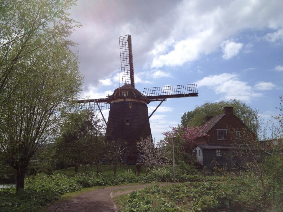 Windmill in my Hometown The Hague