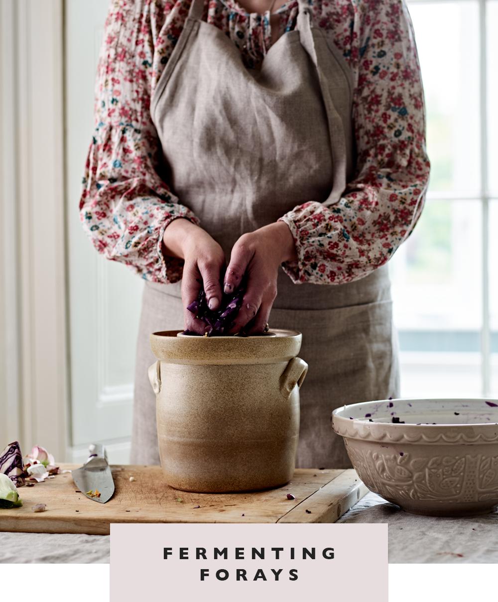 wondergut-fermenting-forays-button.png