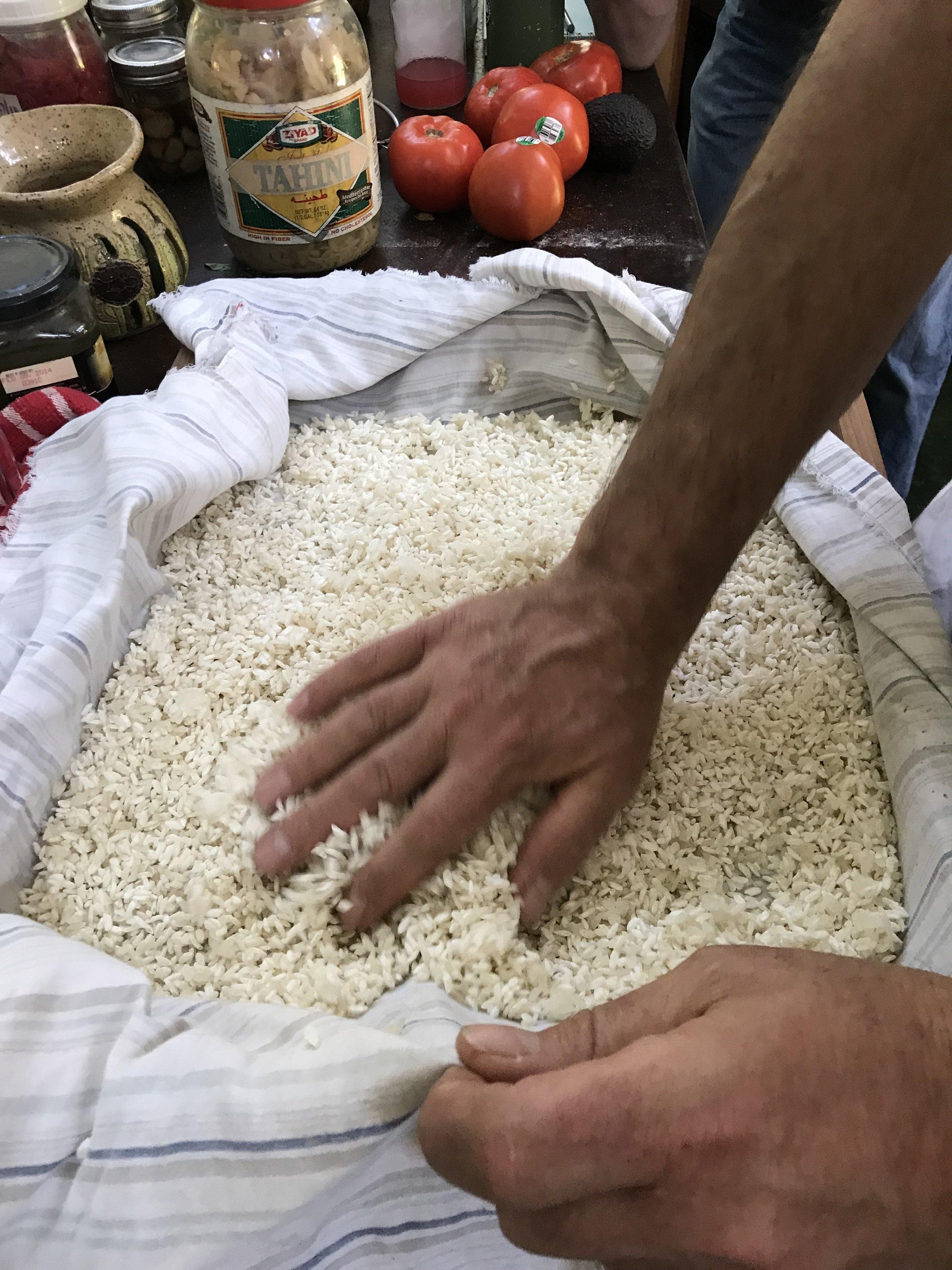 6. Checking the rice Koji.JPG