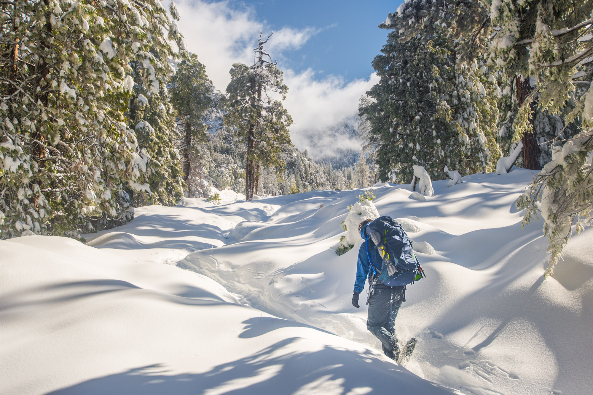 Trudging through 2' of freshly fallen snow on our way up to San Gorgonio Peak
