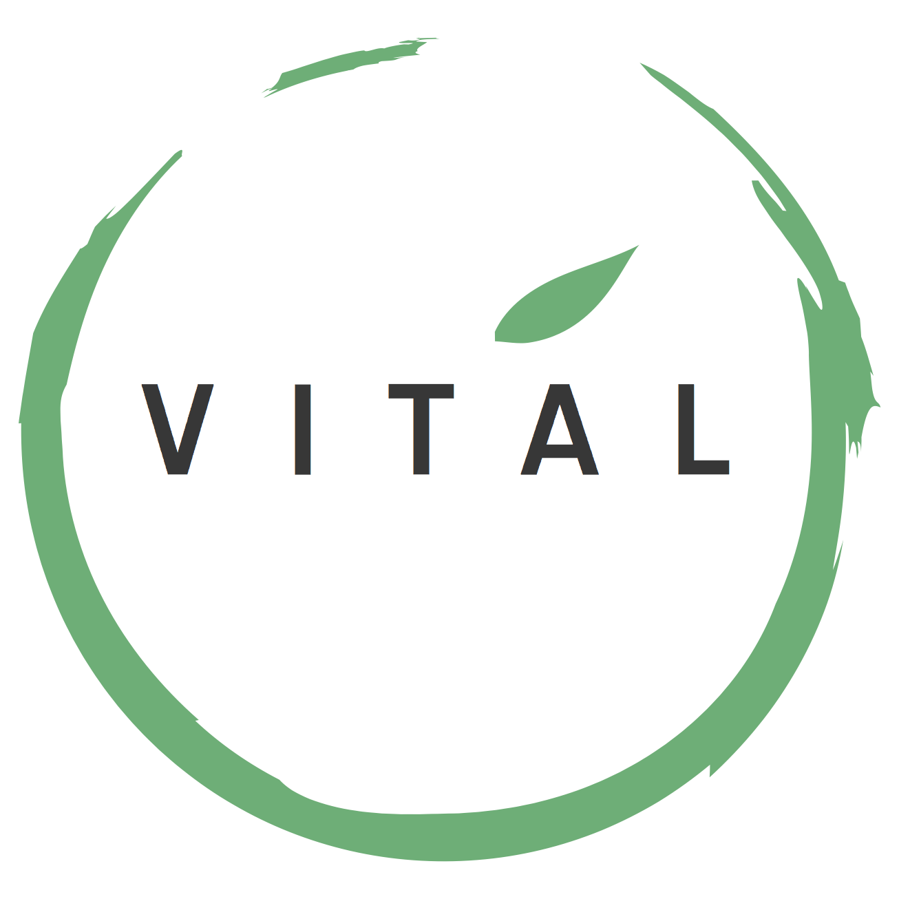 Vital Final Logo 1 (1)(2).png