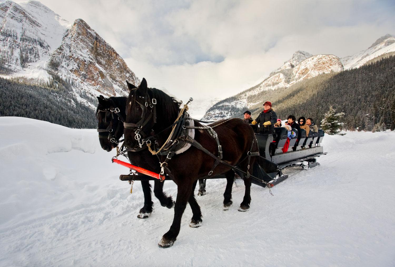 Winter Sleigh Rides Brewster Adventures