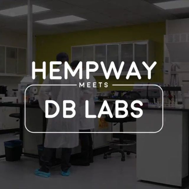 Got to spend some time with @dblabslv and learn about the wonderful things they're doing to keep our hemp and cannabis industry safe and informed  #hemp #hempway #dblabs #cannabis #cbd #lab #hempindustry