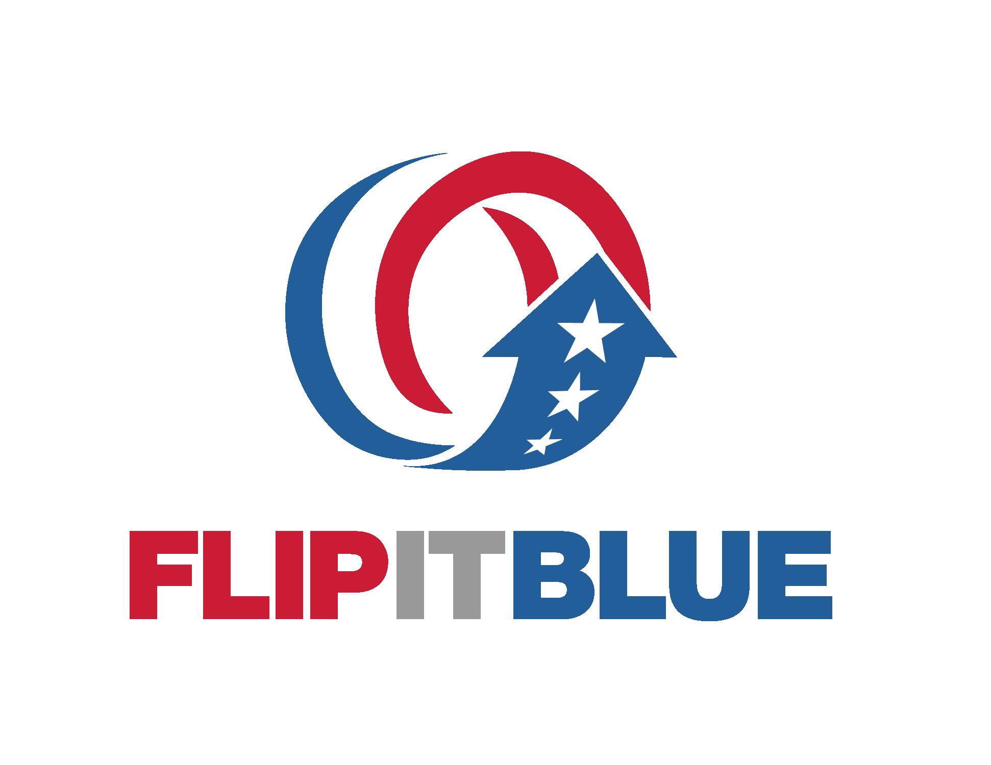 FIB Logo-Gray IT Logo copy.png