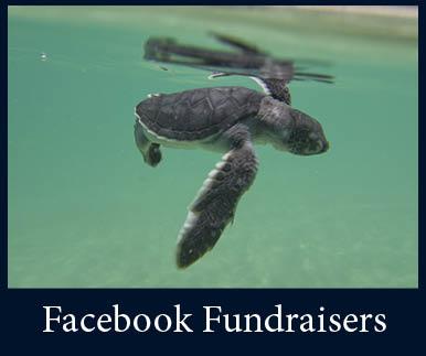 Facebook Fundraiser.jpg