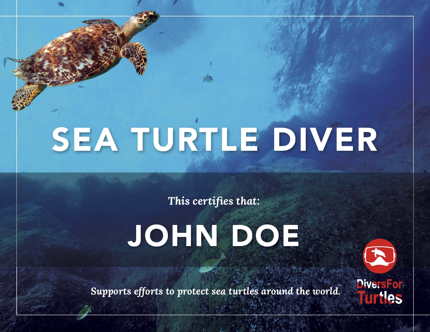 award_divers.jpg