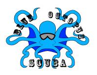 blue_octopus_logo.png