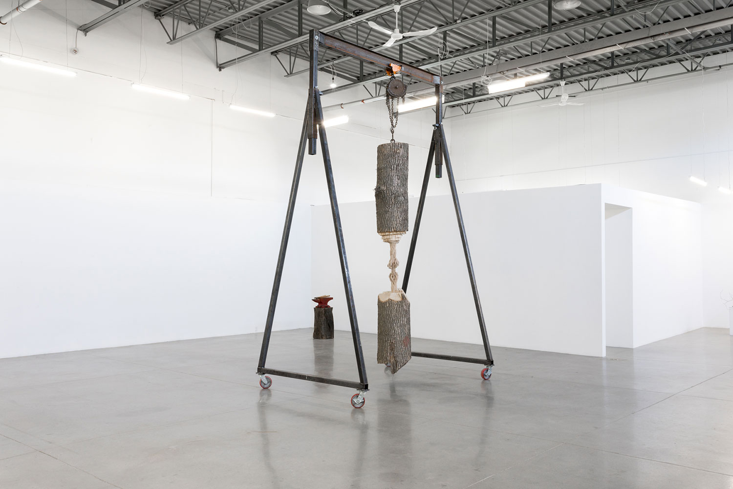 "Study for Cord Progression , 2017, Ash tree trunk, gantry, rigging hardware, 132"" x 24"" x 32"""