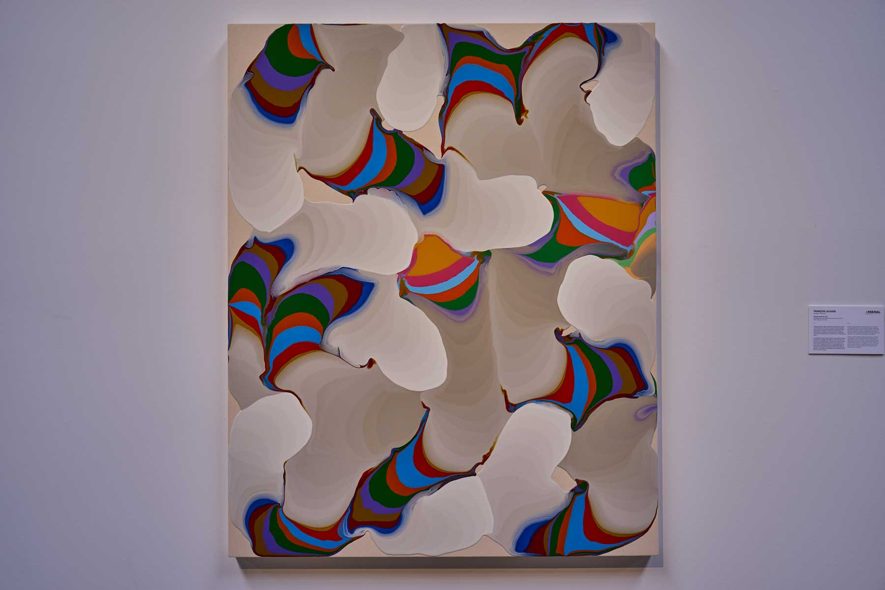 """François Lacasse ,  Pulsions mixtes VII , 2008, Acrylic and ink on wood, 60"""" x 48"""" (152 x 122 cm)"""