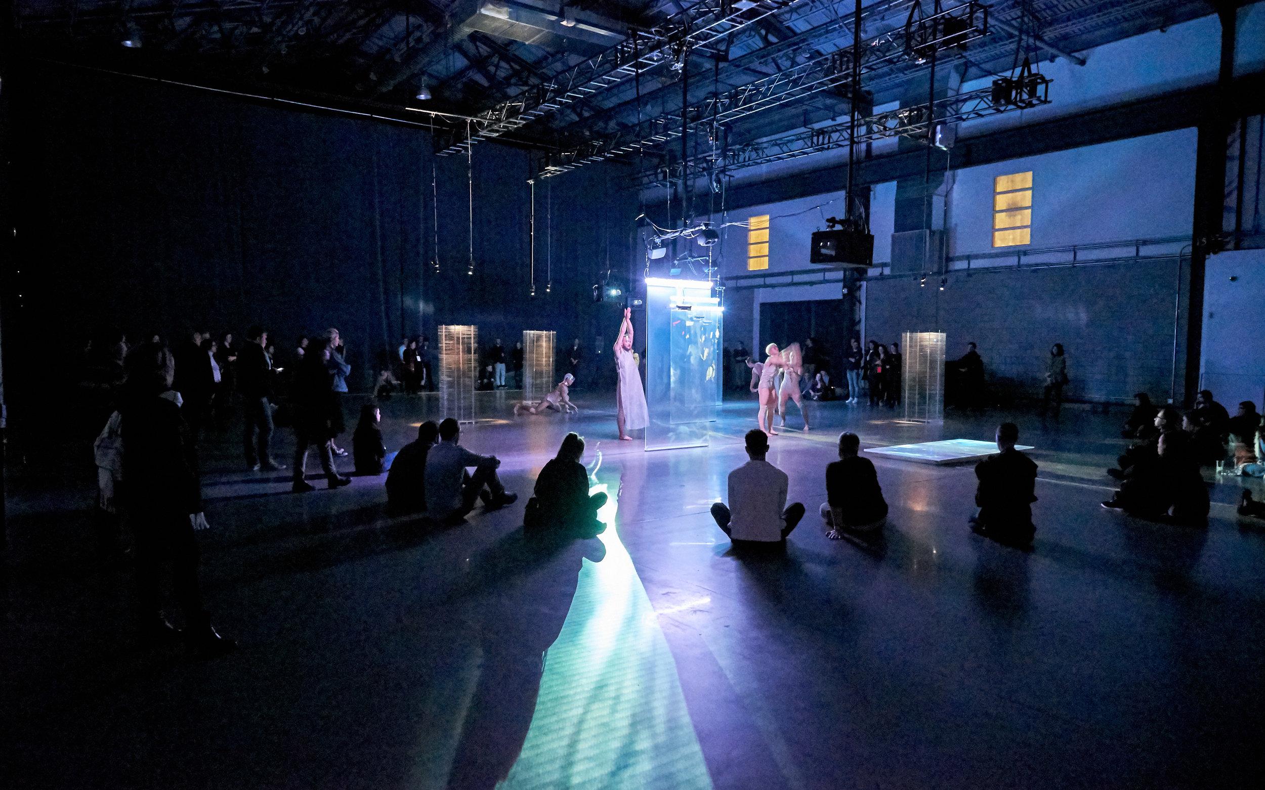 mardi-culturel-td-danse-danse-la-otra-orilla-van-grimde-corps-secrets-16.jpg