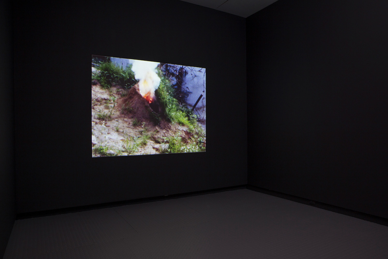 Ana Mendieta ,  Volcano , 1979, Installation view