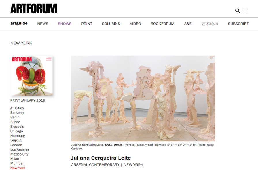 rachel-churner-on-juliana-cerqueira-leite-artforum-international.jpg