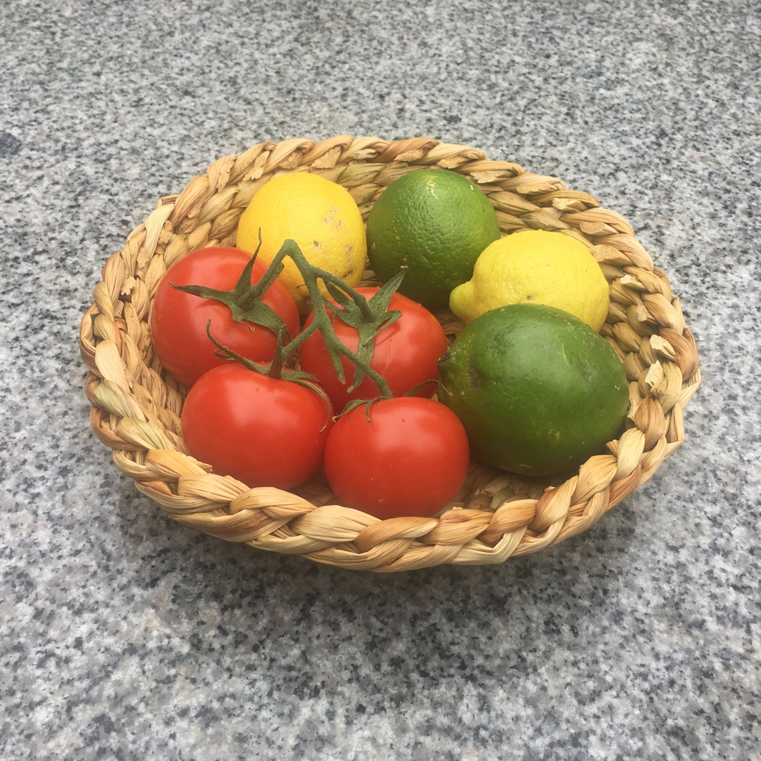 Round tule basket with fruit.jpeg