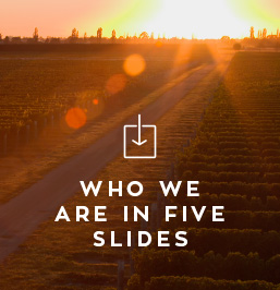 who-we-are-3.jpg