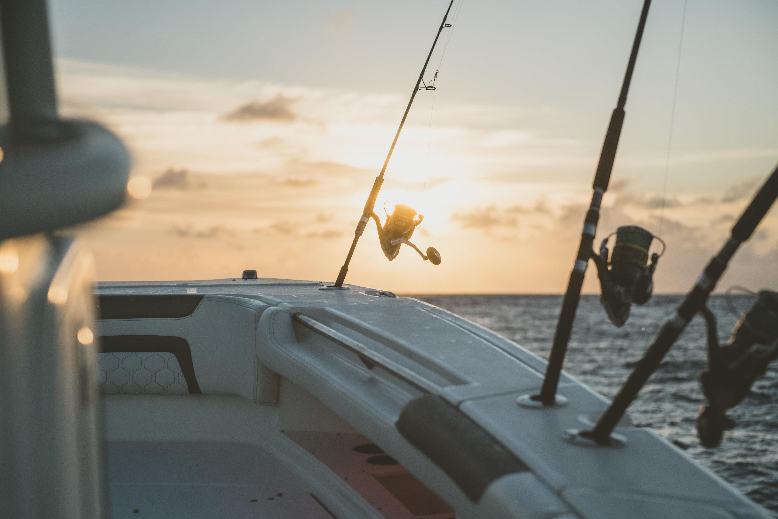 Shimano fishing gear