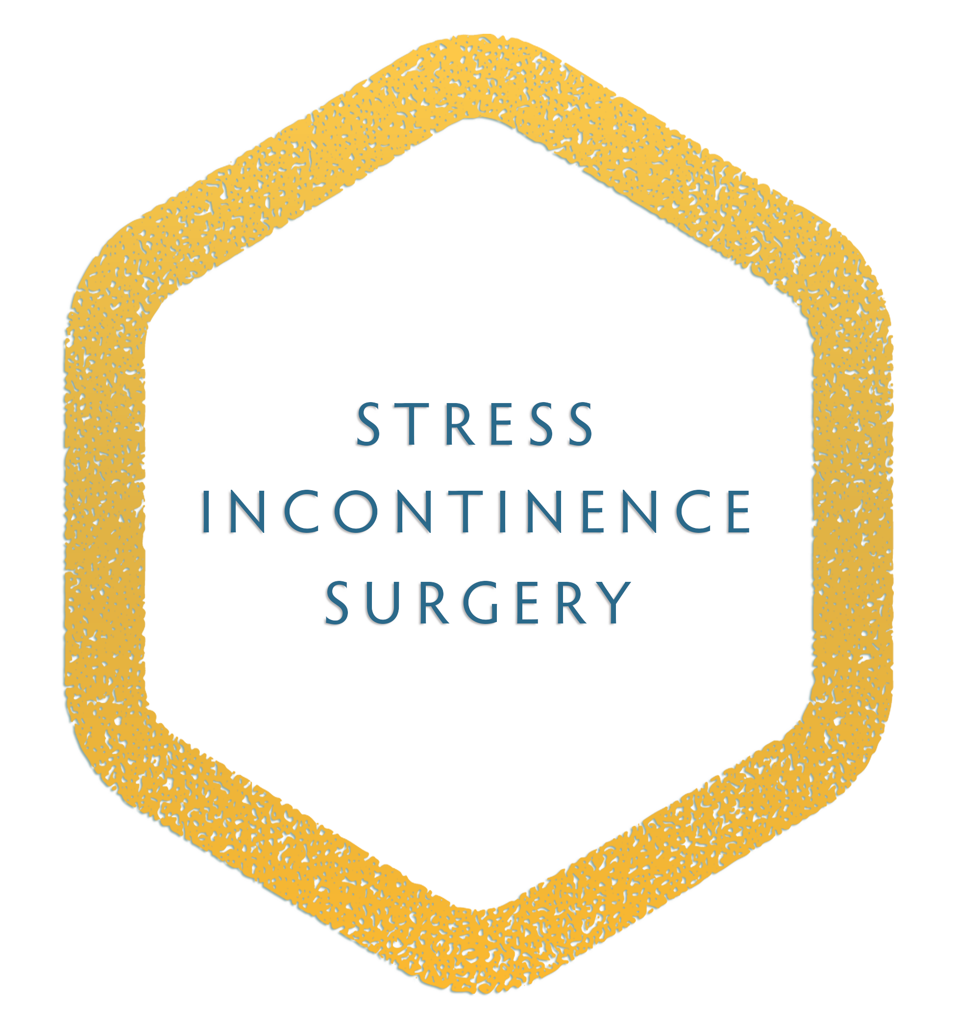 STRESS INCONTINENCE SURGERY.png