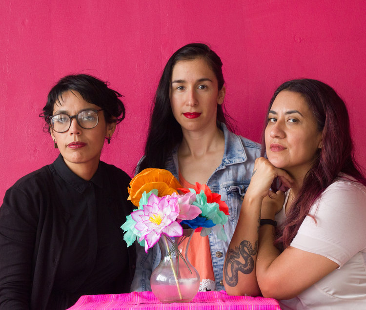 Las imaginistas - Composed of Christina Patino Sukhgian Houle, Nansi Guevara and Celeste De Luna (pictured L to R) Las Imaginistas are a socially engaged art collective based in the Rio Grande Valley. The trio have worked together and independently attacking a wide range of community development issues including immigration, housing, women's rights, racial justice and education. Using their skills as printmakers, healers, performers and designers they attack civic problems at the local, city and state level. With residents, activists, planers and educators they are building today towards a better, co-created, equitable tomorrow.