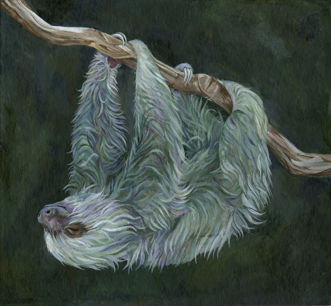 mossy sloth - 12 X 13acrylic paint on chipboardprints available on request