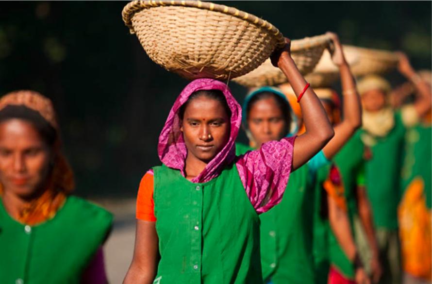 Bengali -