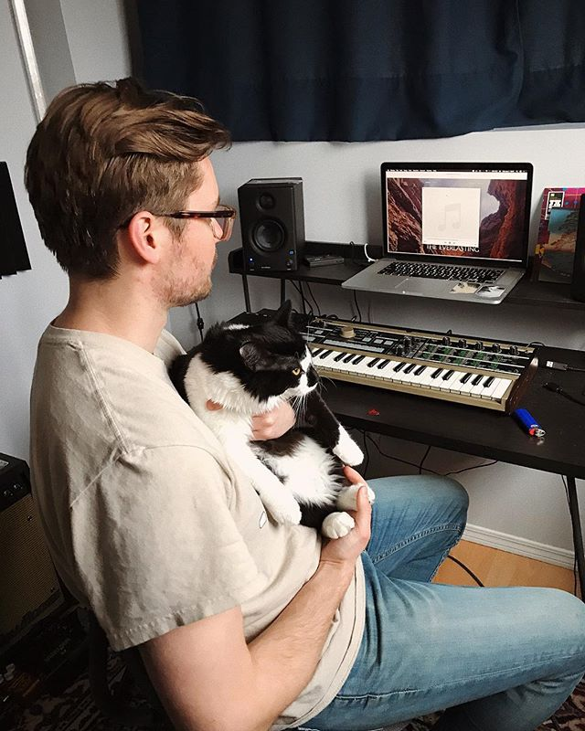 Listening to the master of the upcoming single with little Syrah. I think she enjoyed it although she much preferred gazing out the window and knocking things down. The song will be dropping this month for you all to hear! 😺 . . . . #homestudio #musician #recording #microkorg #presonus #steinberg #catstagram #troublemaker #canadianmusic #manitobamusic #winnipegmusic
