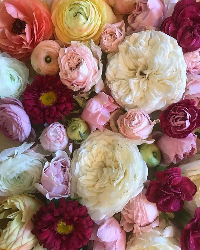 """Don't be like the rest of them darling."" -Coco Chanel . . . #humpday#midweek#quote#quoteoftheday#cocochanel#chanel#individuality#flatlay#flatlaylove#floralflatlay#leftovers#florist#floristlife#flowers#flowersofinstagram#flowersdaily#flowergram#flowerstagram#instaflowers#flowerlove#flowerlife#ihavethisthingwithflowers#underthefloralspell#floraldesign#dsfloral#thatsdarling#pursuepretty#laflorist#losangelesflorist#pasadenaflorist"