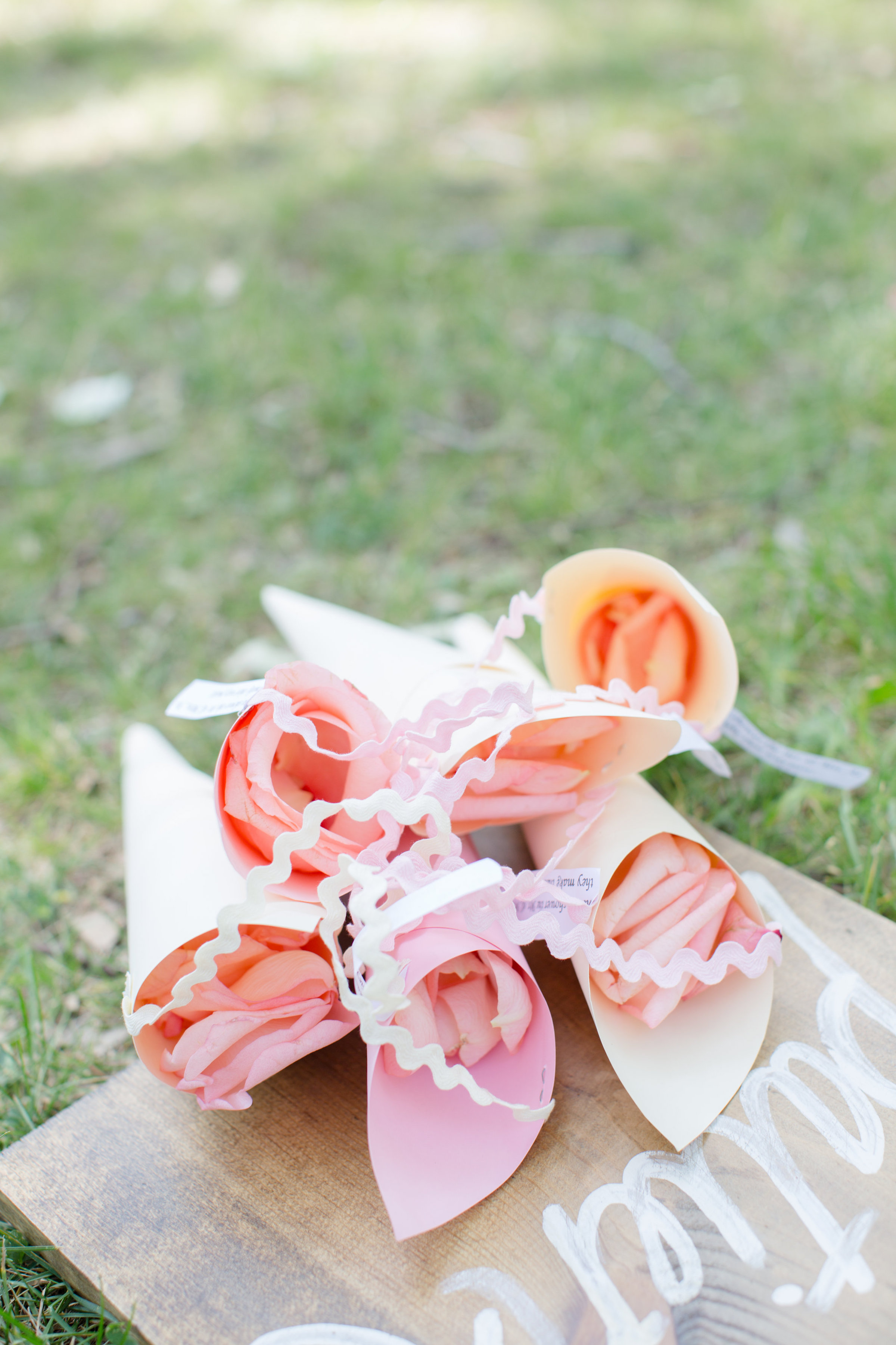 Bethy and Max w gallery-03 rosepetals web.jpg