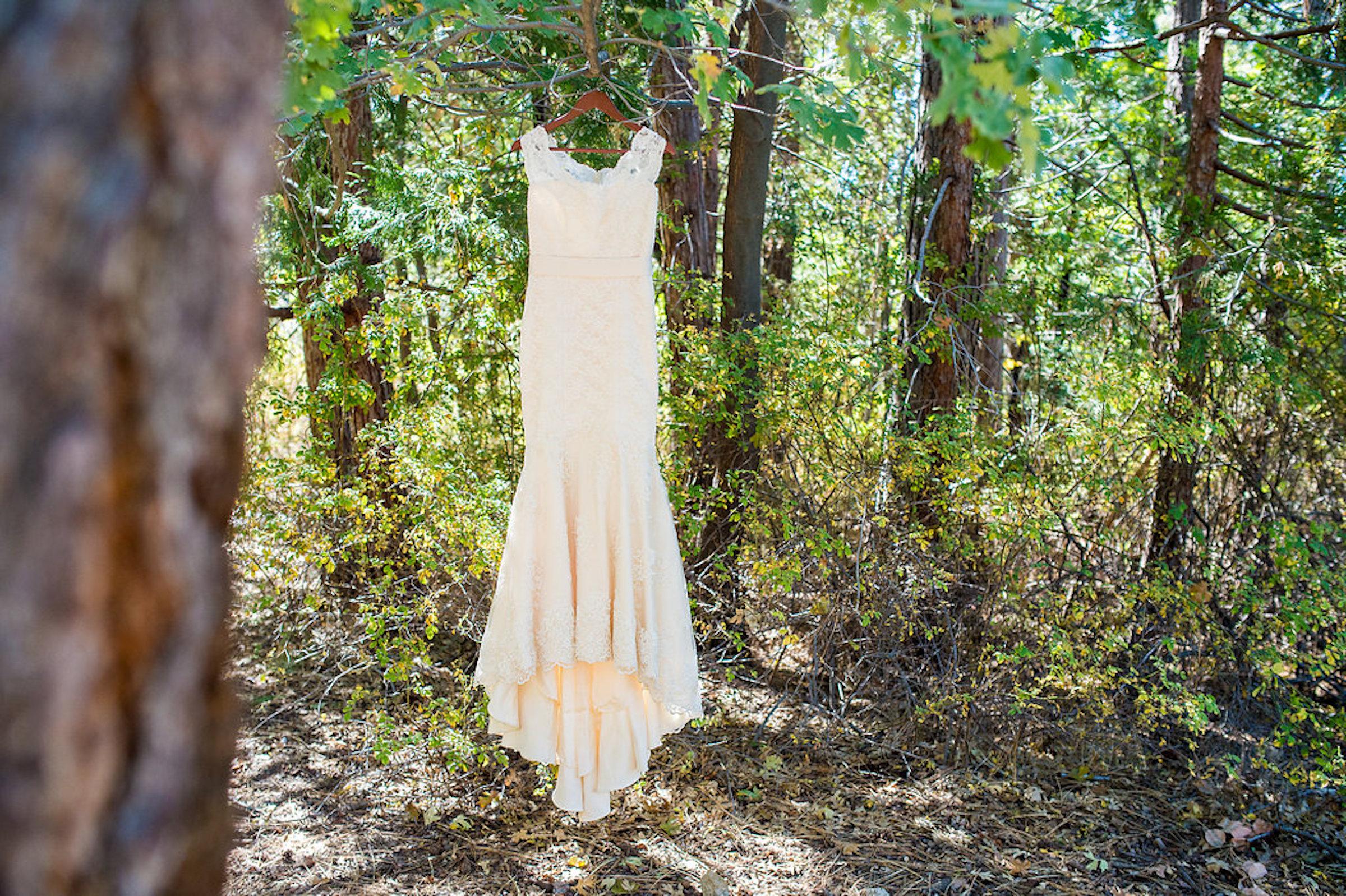 ShaaBree&Todd-Dress Web.jpg