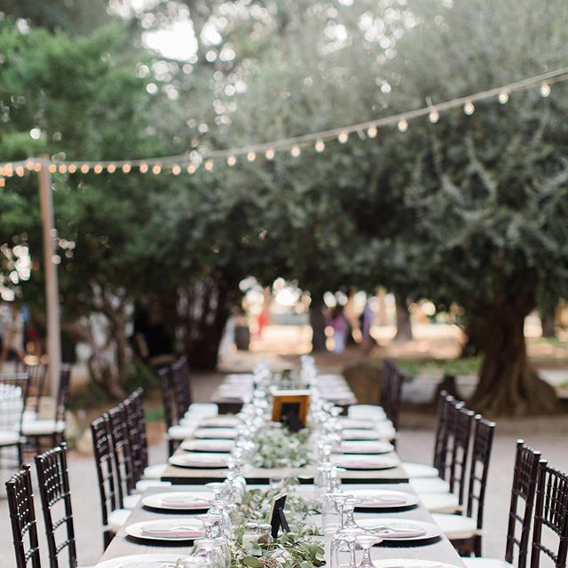 Beautiful eucalyptus, olive branches and cafe lighting @highlandspringsranch @laurianafortuna @thenatureofthings #weddingplanner #socalbride #socalweddingplanner #beautifulweddings #weddingdetails #herecomesthebride #greenweddingshoes #weddingideas #weddinginspiration #destinationwedding #destinationweddingplanner #aisleplanner #theknotweddingpro #ranchwedding #highlandspringswedding #cherierileyweddings #summerweddings
