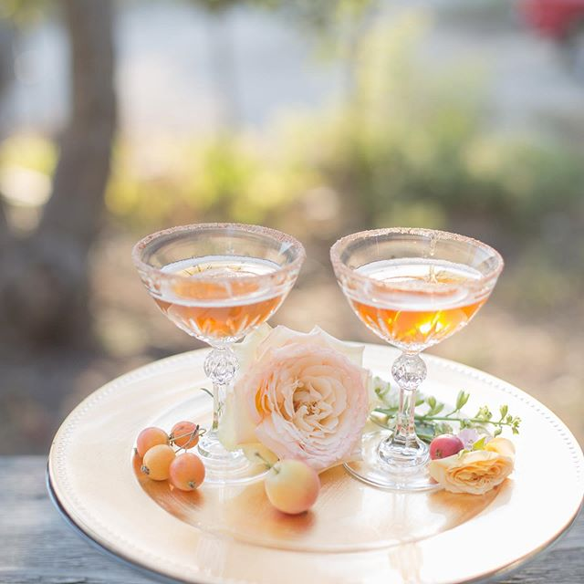 Golden Apple Cider perfect for an Apple Season Wedding.  Photo: @laurianafortuna Vintage Rentals/Planner: @cherie.weddings Venue: Private Estate #appleseasonweddings #weddingplanner #socalbride #socalweddingplanner #beautifulweddings #weddingdetails #herecomesthebride #greenweddingshoes #weddingideas #weddinginspiration  #aisleplanner #theknotweddingpro  #fallwedding #appleranch #applecider #weddingdrinks