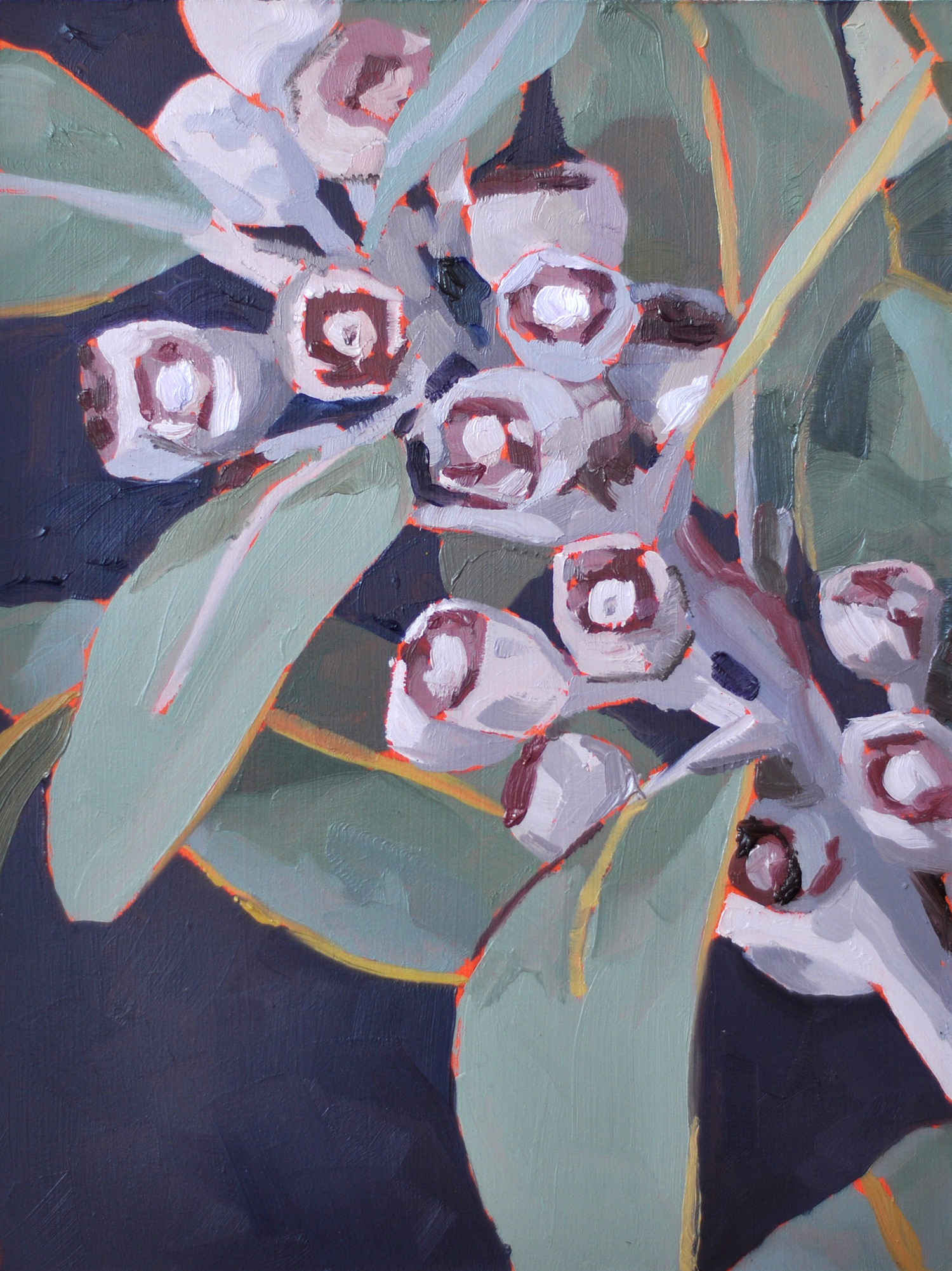Gum nuts oil painting by Emma Fuss