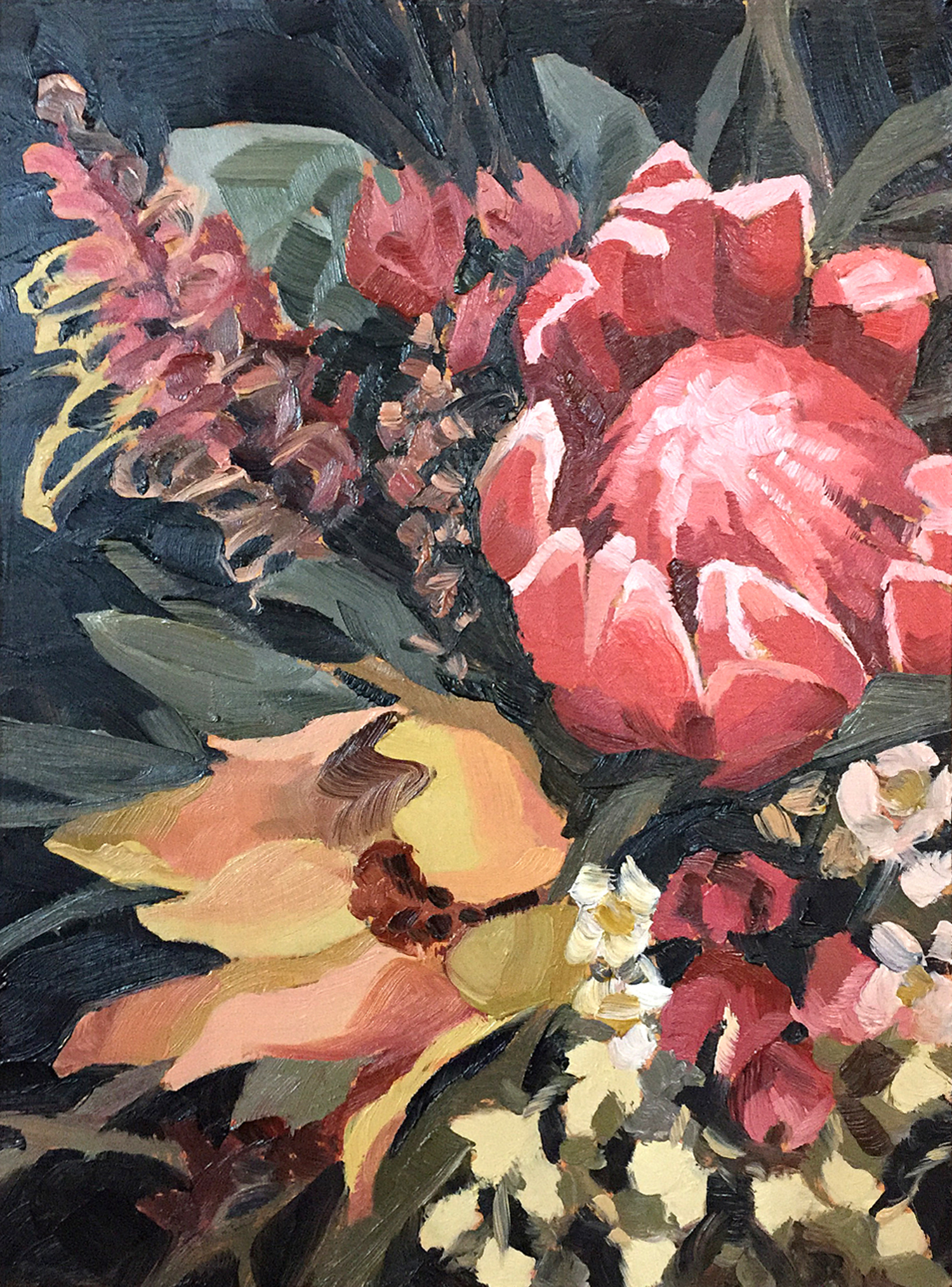 Protea and Leucadendron Oil paintings by Emma Fuss