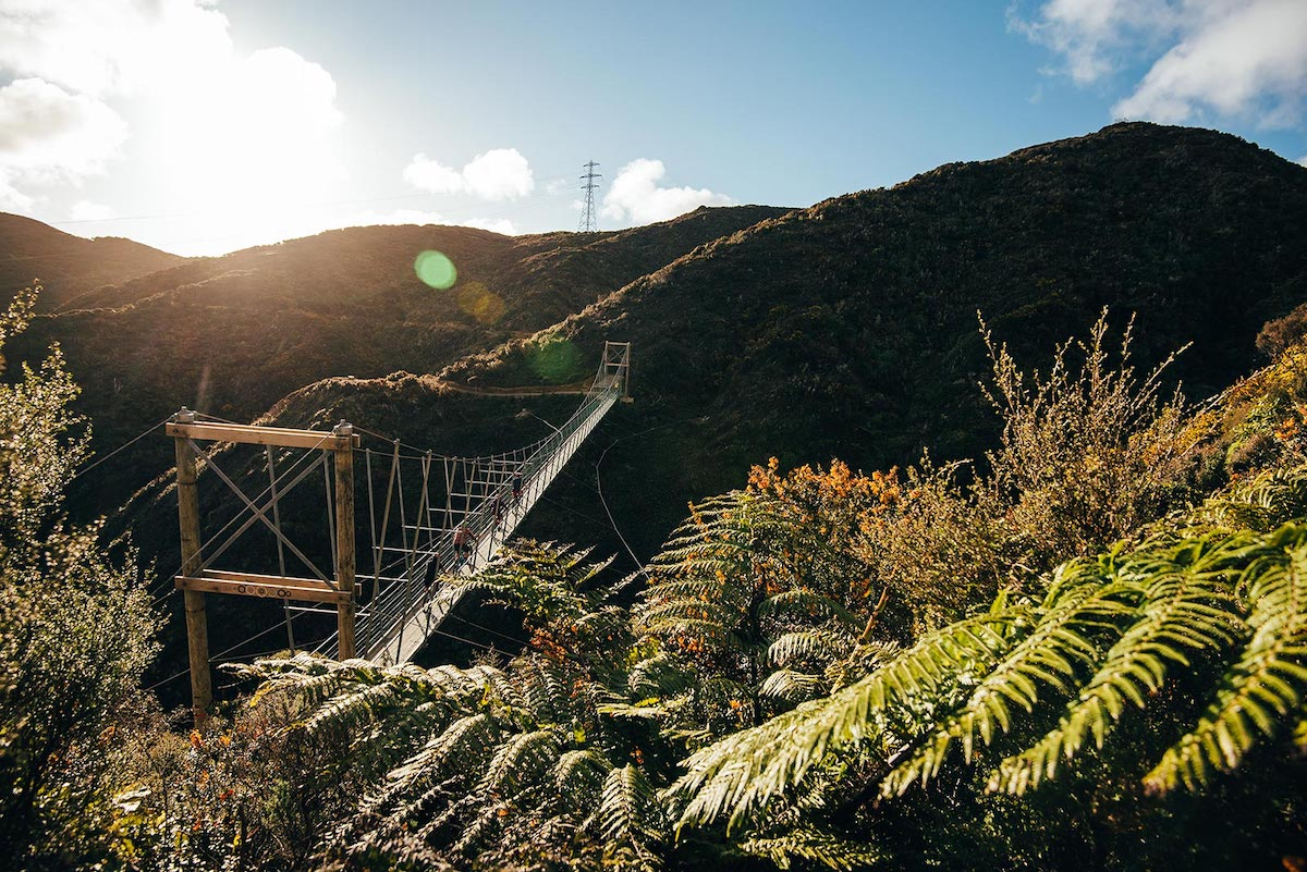 Wellington-Regional-Trails-Jay-French-Makara-Peak-bridge.jpg