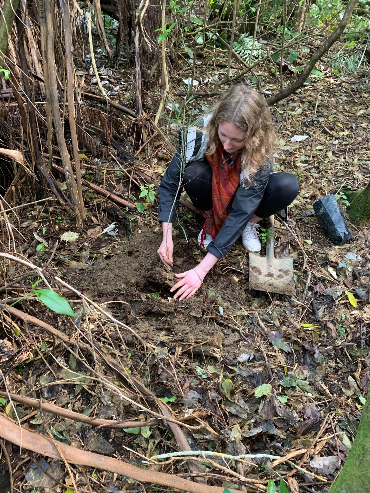 Planting 3.jpg