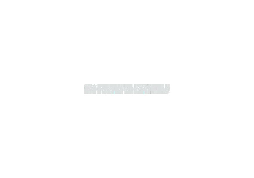 SZ_1_logo.png