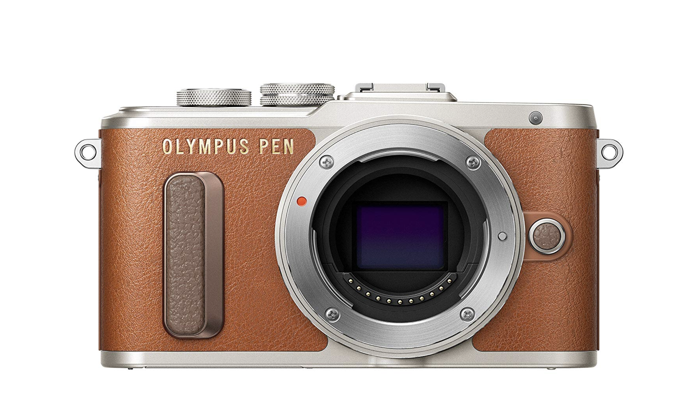 Olympus Pen PL8 - Olympus are at least 100x sexier than Lumix, let's be honest. This camera is small and stylish, and under budget.