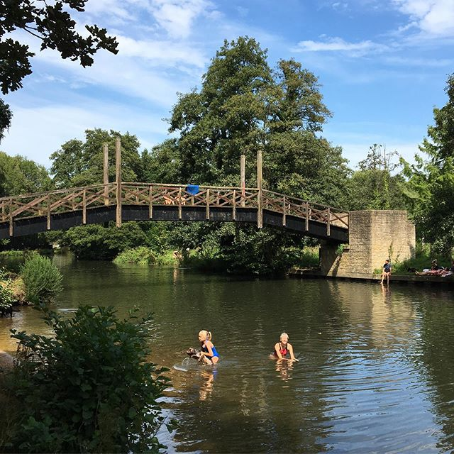 #wildswimming in Guildford. The water was pretty crick in cold, but just what you need in this weather.