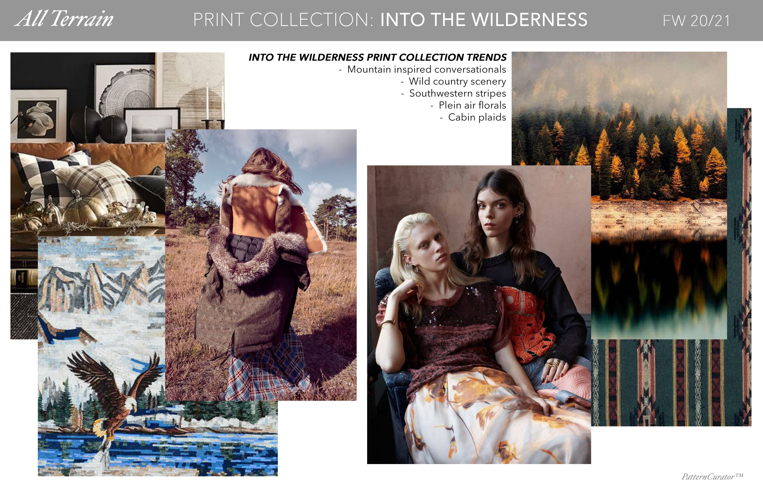 INTO THE WILDERNESS-PG.jpg