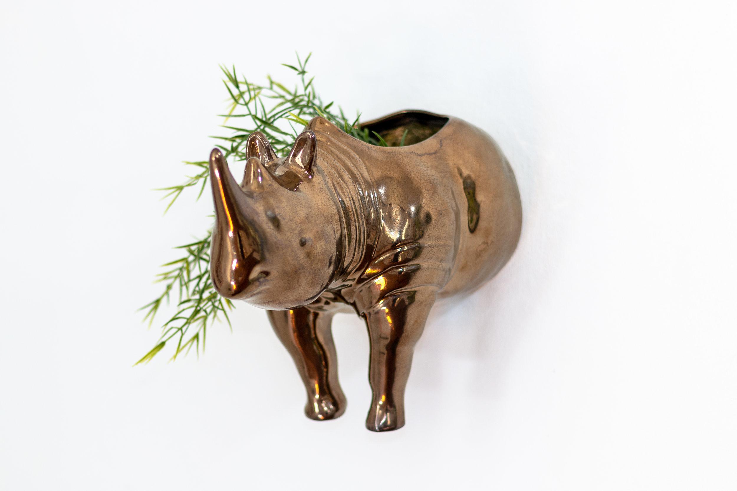 Rialheim Rhino Wall Planter Head Bronze (1 of 2).jpg