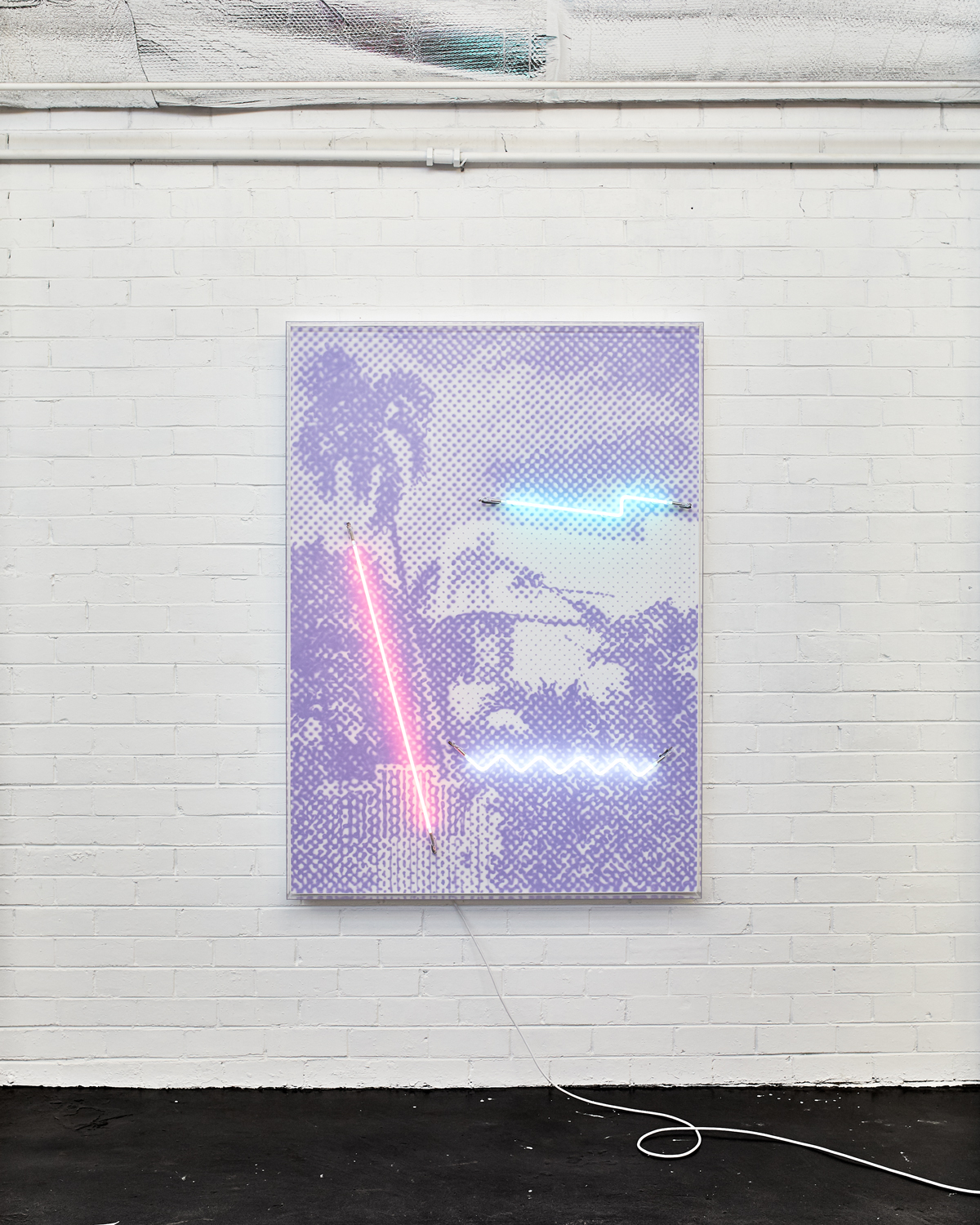 Shadow of a Palm  Airbrush acrylic polymer and neon on dibond, acrylic frame 115x160cm
