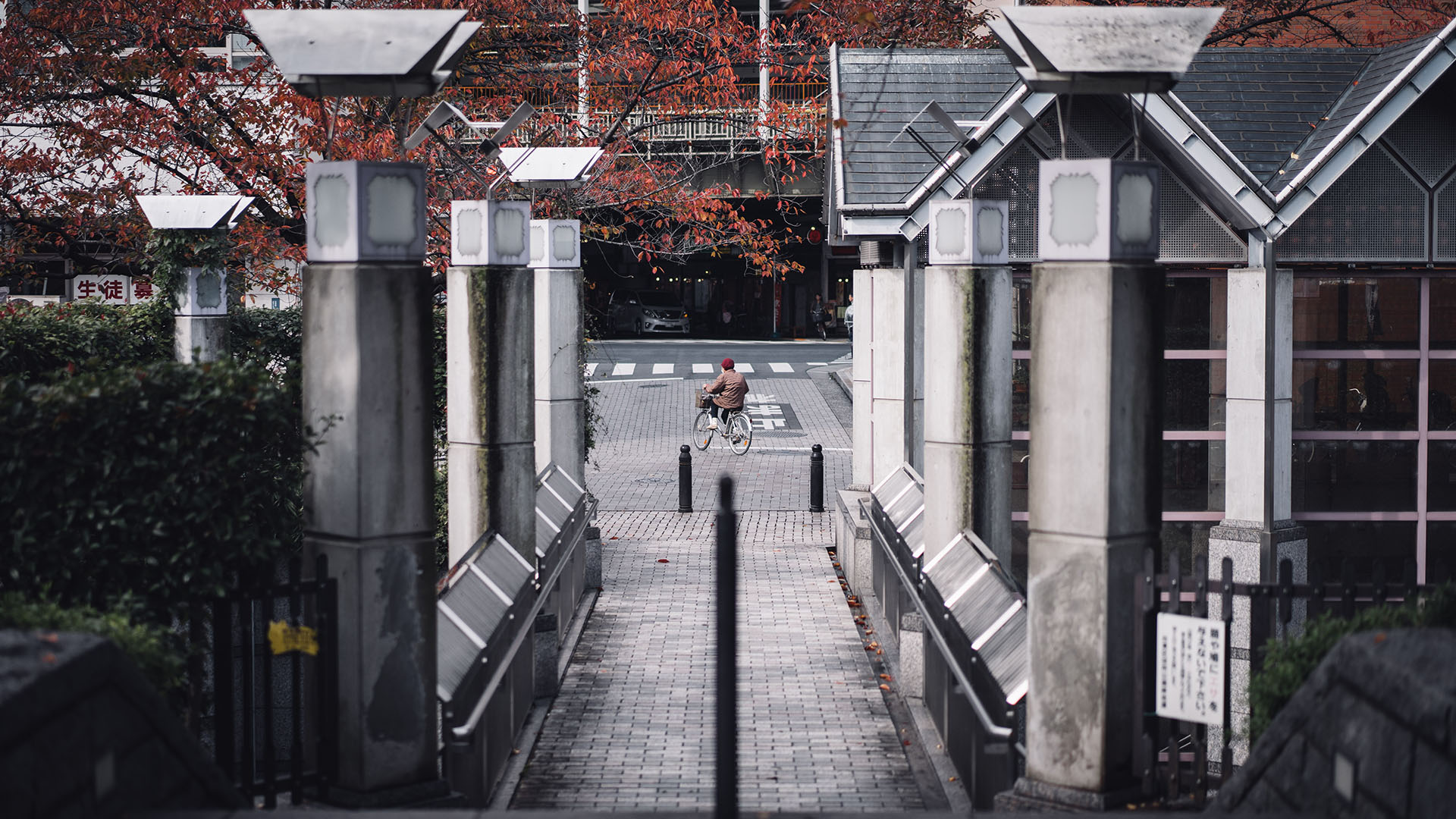 JapanPhotog-Work_TemplateArtboard 2.jpg