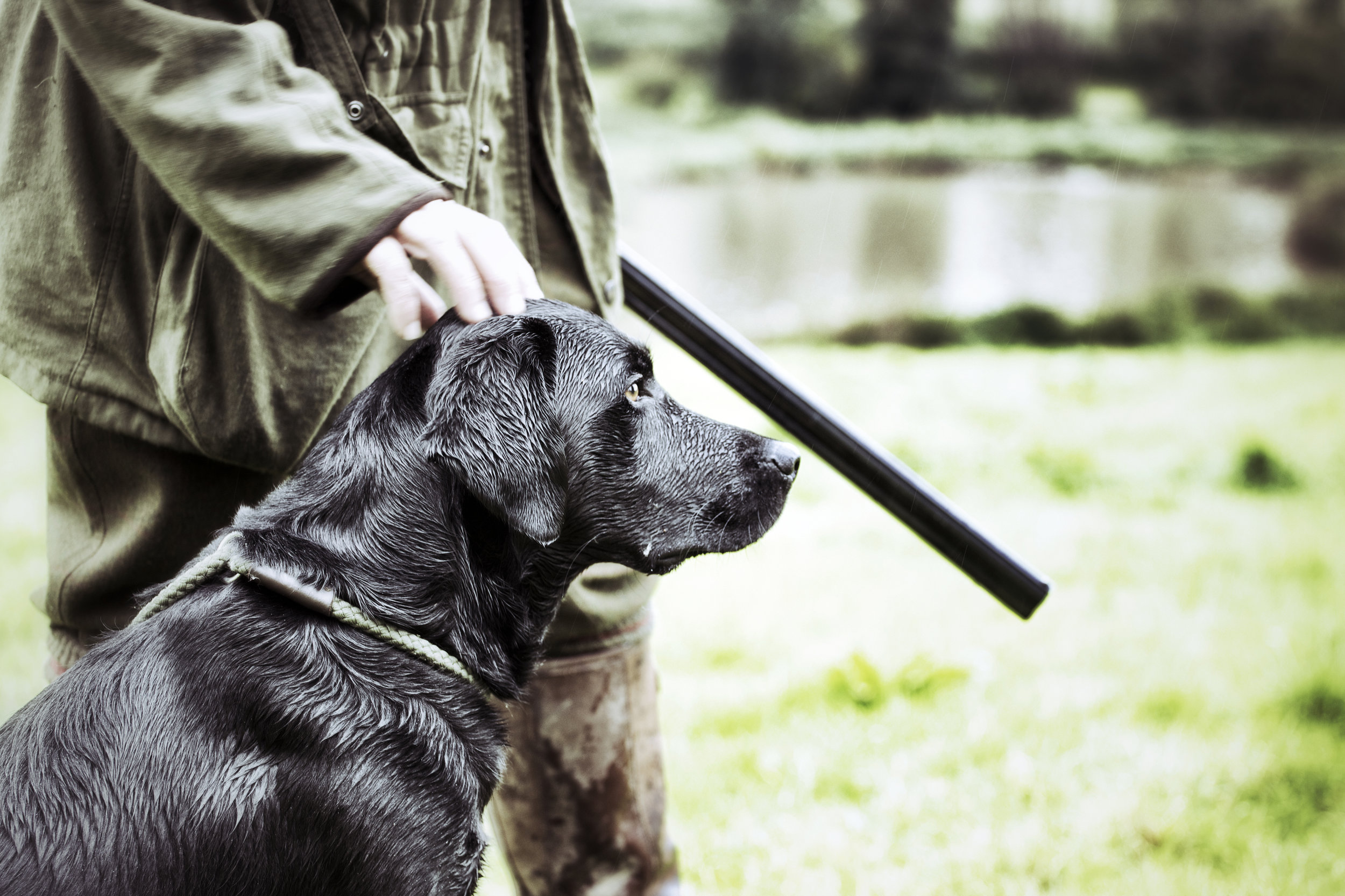 Gamekeeper--with-his-dog-154422868_3867x2578.jpeg