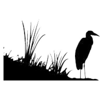 lccs egret.PNG
