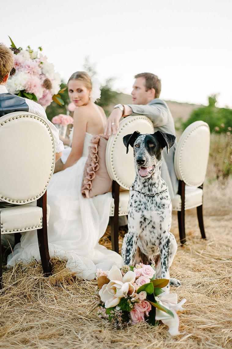 john-schnack-photography-san-diego-wedding-inspiration-shoot-back-country-vintage-wedding-25.jpg