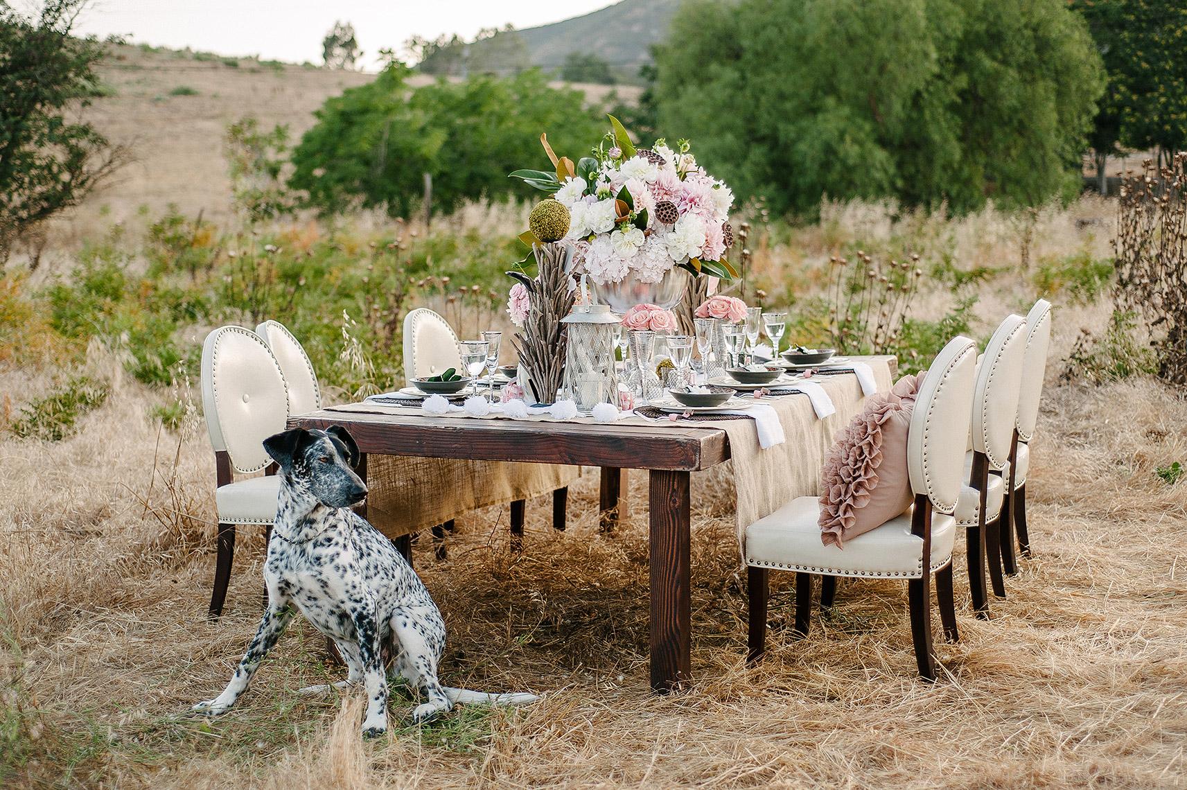 john-schnack-photography-san-diego-wedding-inspiration-shoot-back-country-vintage-wedding-24.jpg