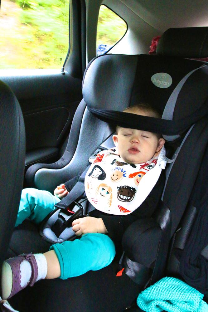 Eleanor catching a snooze between destinations
