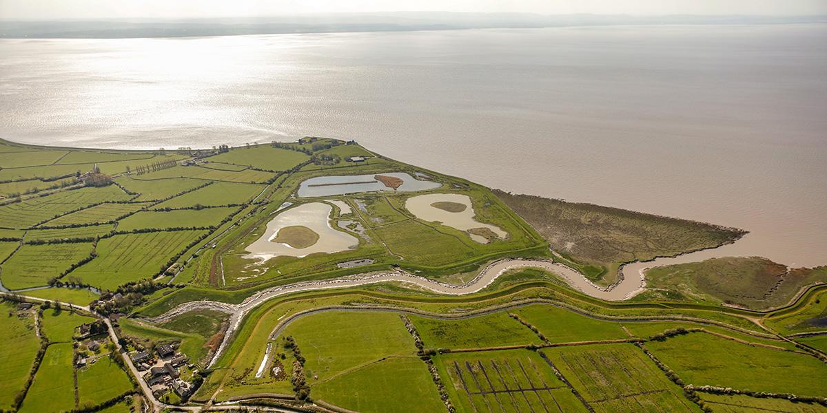goldcliff lagoons aerial.jpg