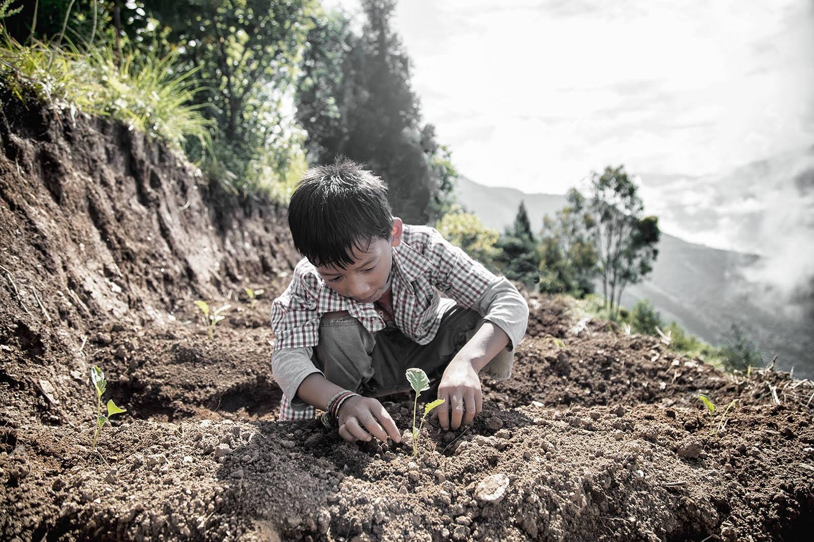 boy plant.jpg