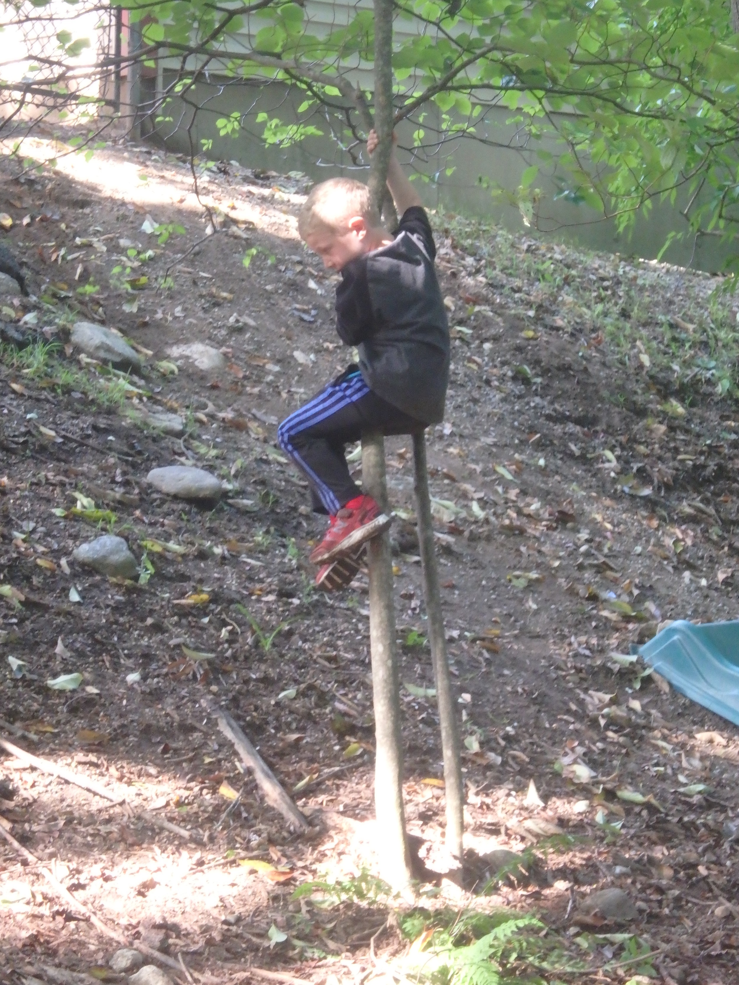 Children often set their own goals and challenges that they work on over time.  Having a chance to go to the woods often allows the children time to work on their goals.